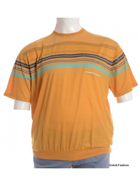 Tricou barbati marime mare tricougf209b